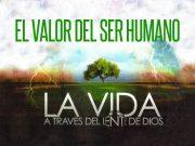 El valor del ser humano