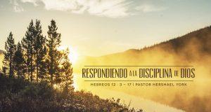 Respondiendo a la disciplina de Dios - Pastor Hershael York