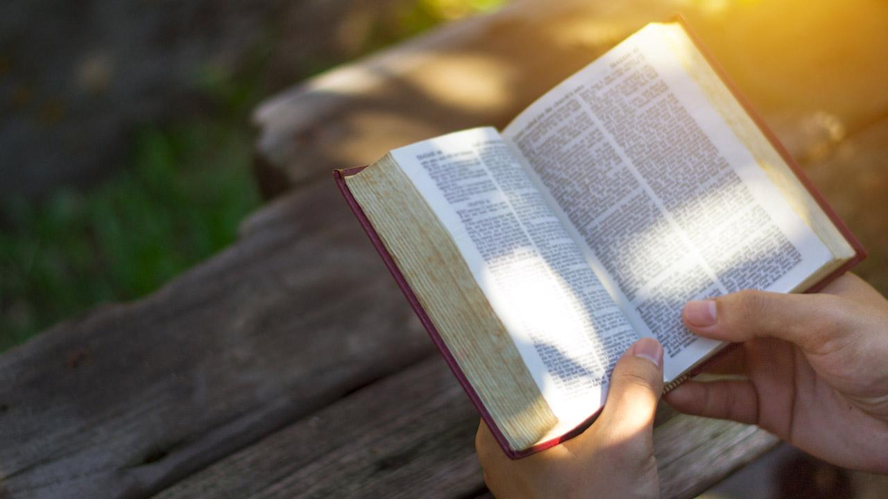 Cómo Confrontar A Alguien Que Está En Pecado Integridad